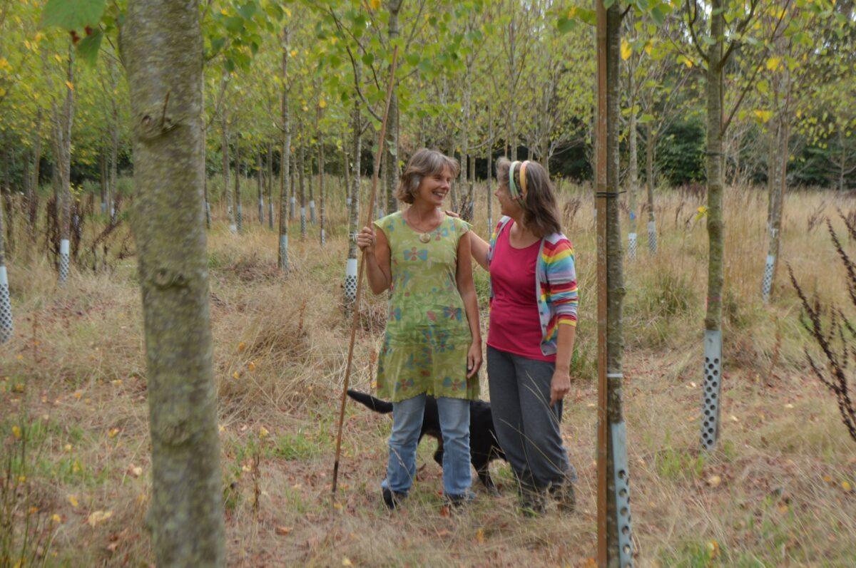 Stichting Voedselbos Glimmen van start met rondleiding en Grote Bomenactie