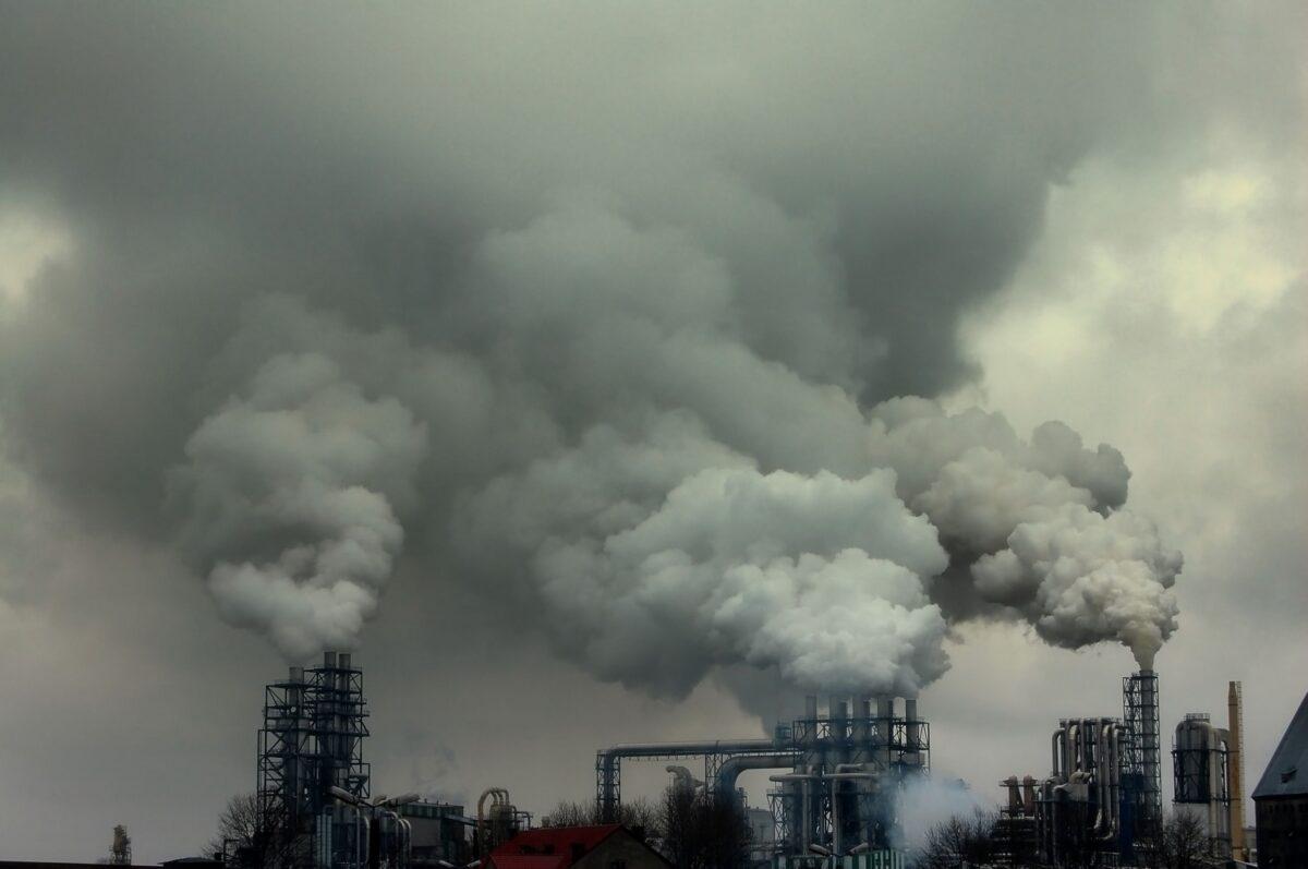 Natuur en Milieufederaties dringen bij Verhagen aan op voortvarende CO2-aanpak