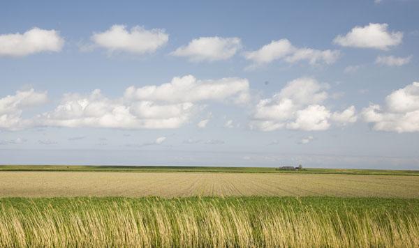 Milieufederatie Groningen laat van zich horen bij hoorzitting EDF