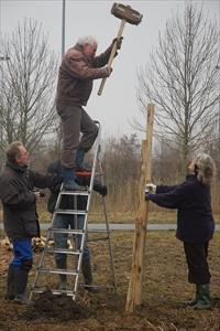 Boomgaard De Uilenburg ingeplant