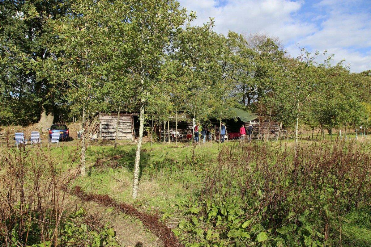 Steun voedselbos Glimmen: koop of doneer een boom!