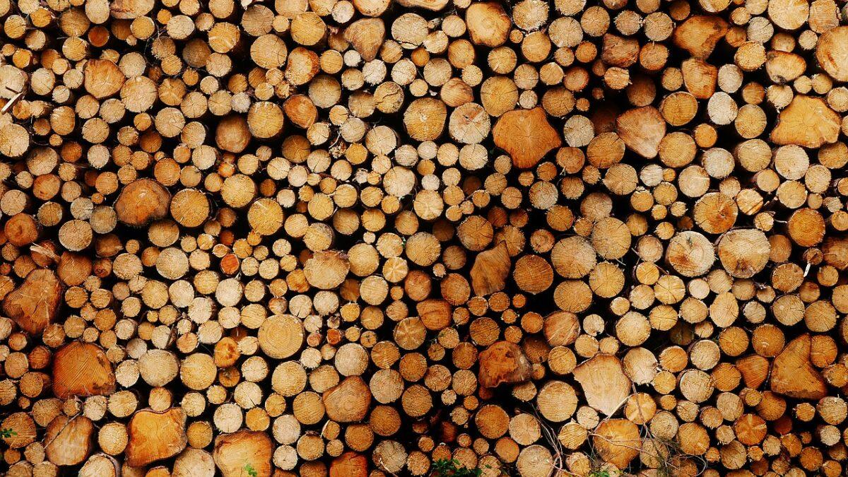 Natuur- en Milieuorganisaties stappen uit Convenant Duurzaamheid Biomassa: productie veroorzaakt natuurschade