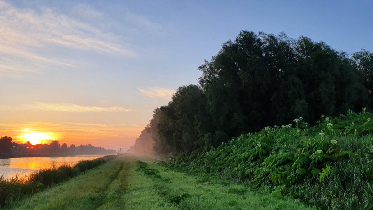 Behoud Driebondsbos voor havik en nachtegaal